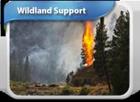 boxes-200-wildland